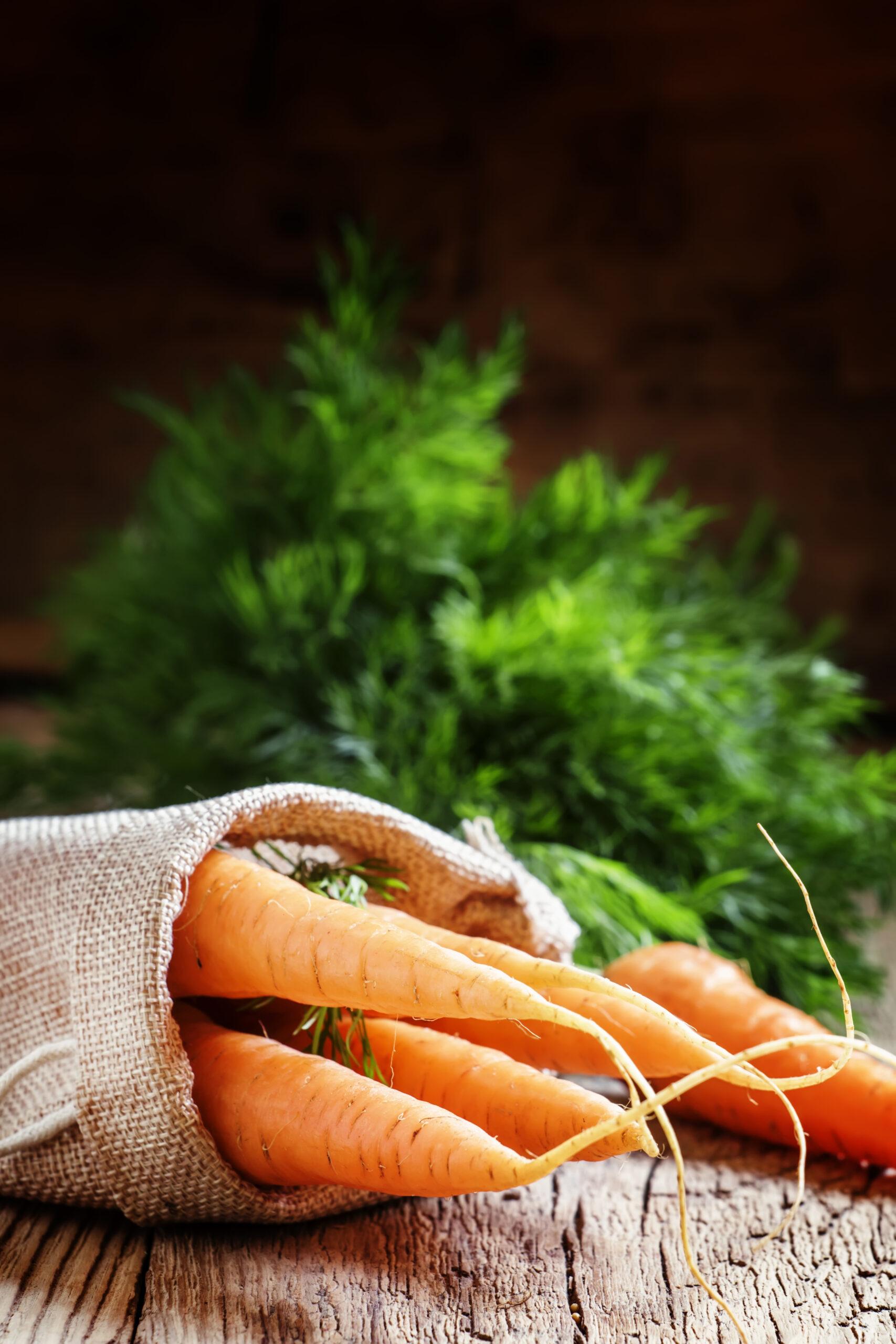 Beutel mit Karotte
